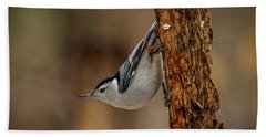 Nuthatch 1 Bath Towel