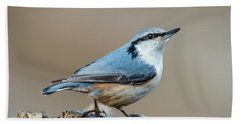 Bath Towel featuring the photograph Nuthatch's Pose by Torbjorn Swenelius