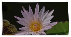 Nymphaea Pubescens Bath Towel