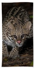 Hand Towel featuring the photograph Ocelot #1 by Wade Aiken