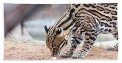 Ocelot And Egg Bath Towel