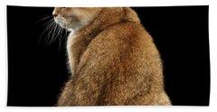 offended British cat Golden color Bath Towel