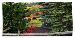 Hand Towel featuring the photograph Ohio Farm In Autumn by Joan  Minchak
