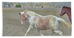 Bath Towel featuring the photograph Old Mare by Debby Pueschel