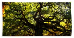 Old Old Angel Oak In Charleston Hand Towel