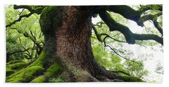 Old Tree In Kyoto Bath Towel
