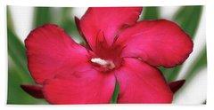 Oleander Blood-red Velvet 1 Hand Towel