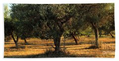Olive Grove 3 Hand Towel