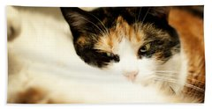 Bath Towel featuring the photograph On A Furry Pillow by Laura Melis