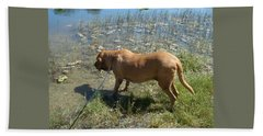 On The Hunt Bath Towel by Val Oconnor