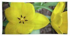 One And A Half Yellow Tulips Bath Towel by Michelle Calkins
