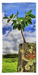 Bath Towel featuring the photograph One Tree One Post by DJ Florek