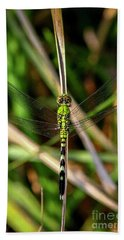 Bath Towel featuring the photograph Openminded Green Dragonfly Art by Reid Callaway