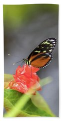 Orange And Black Butterfly Hand Towel
