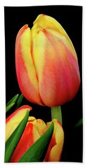 Orange And Red Tulips Hand Towel
