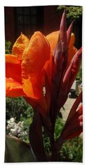 Orange Canna Lily Hand Towel by Rod Ismay