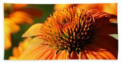 Orange Coneflower At First Light Bath Towel