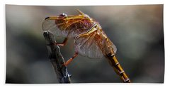 Dragonfly 1 Bath Towel
