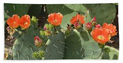 Orange Dream Cactus Hand Towel