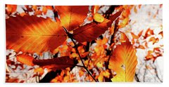 Orange Fall Leaves Hand Towel by Meta Gatschenberger