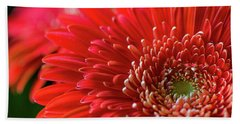 Hand Towel featuring the photograph Orange Gerbera by Clare Bambers
