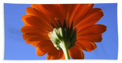 Orange Gerbera Flower Hand Towel by Ralph A  Ledergerber-Photography