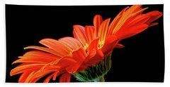 Orange Gerbera On Black Bath Towel