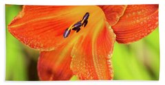 Orange Lilly Of The Morning Hand Towel by Ken Stanback