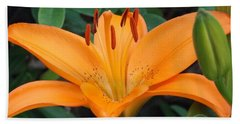Orange Lily Hand Towel by Catherine Gagne
