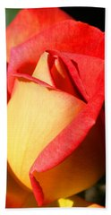 Orange Rosebud Hand Towel by Ralph A  Ledergerber-Photography