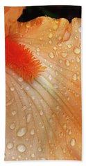 Orange Sherbet Hand Towel