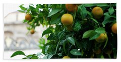 Orange Tree Hand Towel
