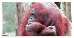 Orangutang Contemplating Bath Towel