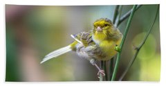 Orchard Oriole Hand Towel