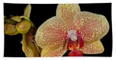 Orchid 377 Hand Towel