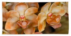 Orchid 392 Hand Towel