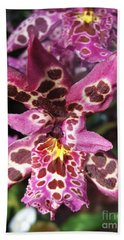 Bath Towel featuring the photograph Orchid Beauty by Jasna Gopic