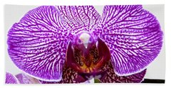 Orchid Hand Towel by Tim Townsend
