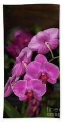Hand Towel featuring the photograph Orchids Alicia by The Art of Alice Terrill
