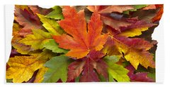 Oregon Maple Leaves Mixed Fall Colors Background Hand Towel