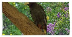 Oropendola Bird On Limb With Floral Background Bath Towel