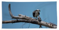 Osprey And Fish Hand Towel