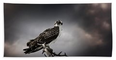 Hand Towel featuring the photograph Osprey by Chrystal Mimbs