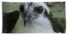 Osprey Portrait Bath Towel
