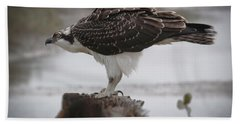 Osprey Bath Towel