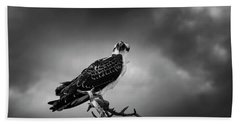 Osprey In Black And White Bath Towel by Chrystal Mimbs
