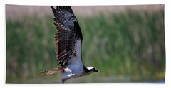 Bath Towel featuring the photograph Osprey In Flight by Gary Hall