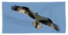 Hand Towel featuring the photograph Osprey In Flight by Robert Banach