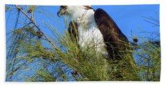 Osprey In Tree Bath Towel