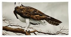 Osprey Sea Hawk Hand Towel by James Williamson